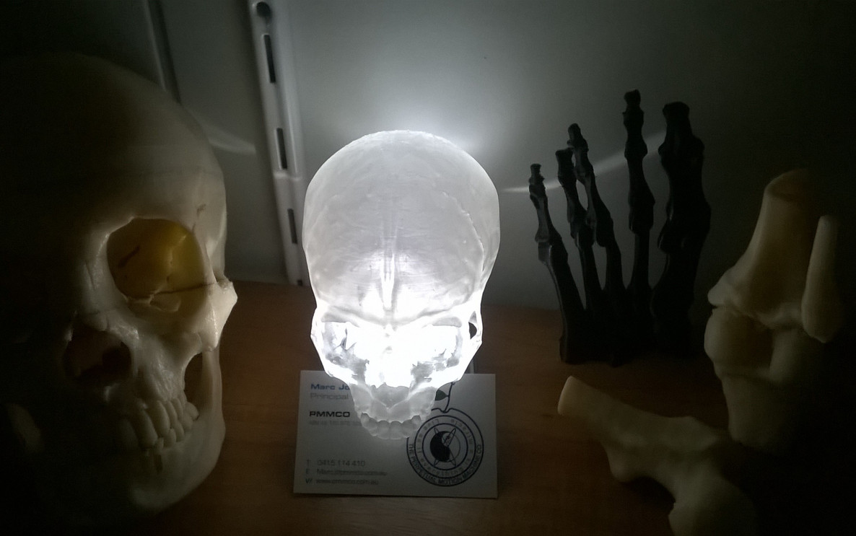 Anatomical specimens
