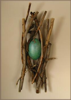 Aqua Nest
