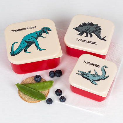 Prehistoric Land 3 Pack Lunch Box's