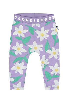 BONDS Lilac Daisy Stretchies