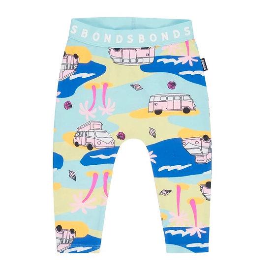 Beach Safari Stretchies