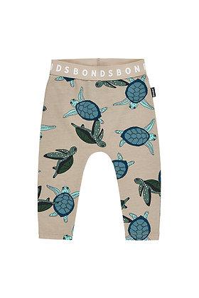 BONDS Sea Turtles Sand Storm Stretchies