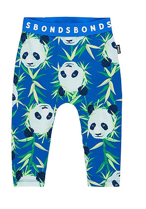 NEW Peter Panda Stretchies