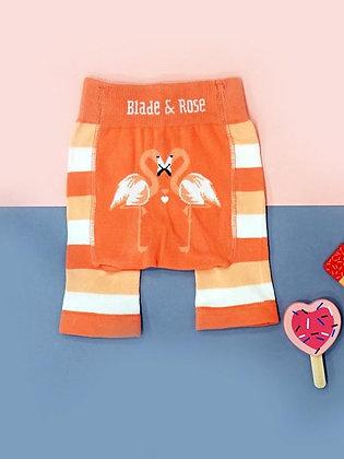 Blade & Rose Flamingo Shorts