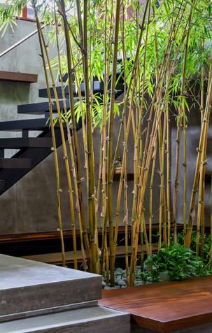 Petaluma Residence, Trevor McIvor Architect