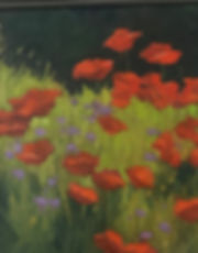 Poppies in the Field.jpg
