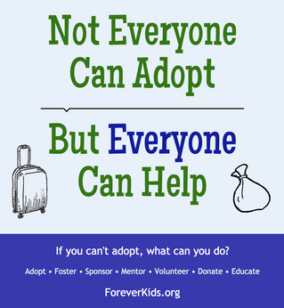 Not Everyone Can Adopt, But EVERYONE Can Help