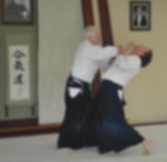 Alamo Area Aikikai Aikido in San Antonio, David Halprin, Aikido of Austin