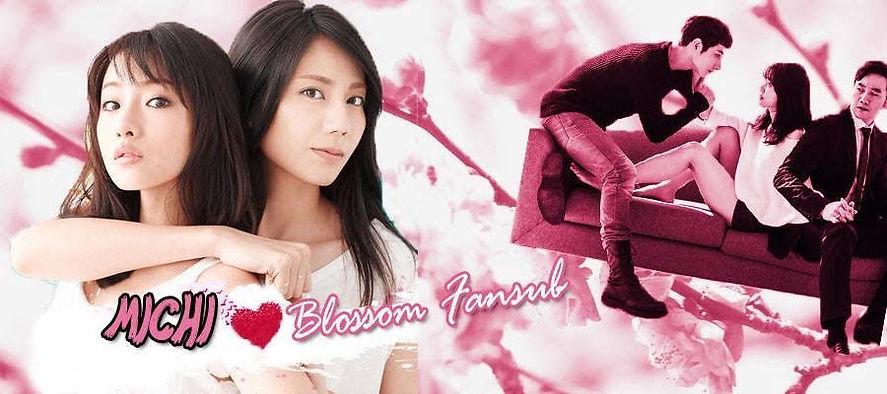 interview blossom fansub