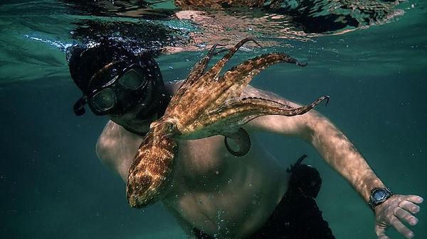 My_Octopus_Teacher__Craig_with_oct_Ross_
