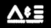 A&E branding alt logo white