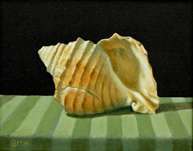 Seashell #3