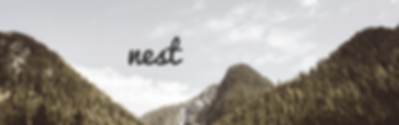 nest brand identity