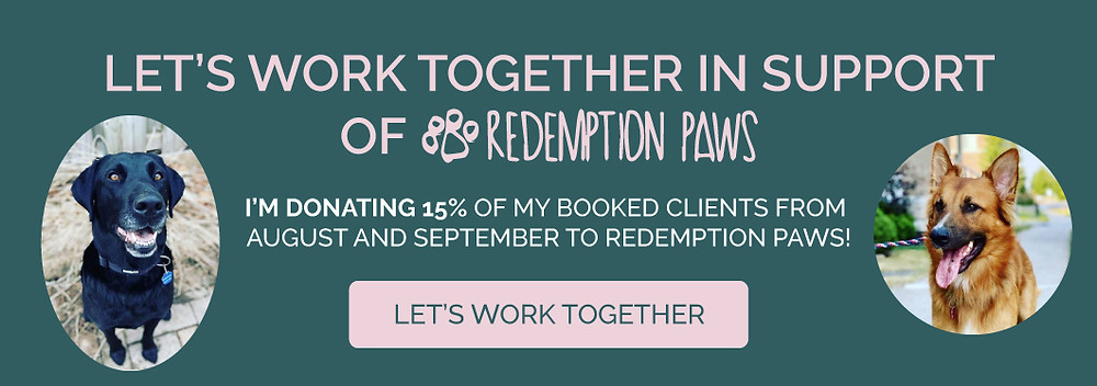 redemption paws promo banner