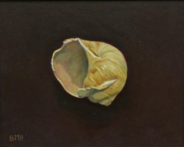 Seashell #1