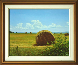 Hay Rolls and Clouds
