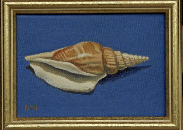 Seashell on Blue