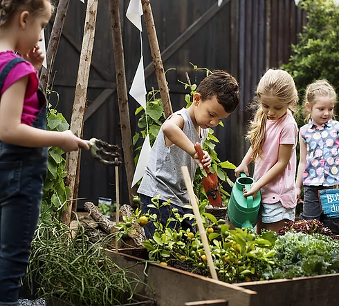 Permaculture for Children at GROW Sustainable Living Toms Creek