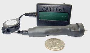 CATTFish Photo.jpg