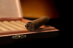 Cigars for Sale