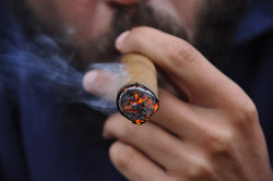 Where To Buy Cigars