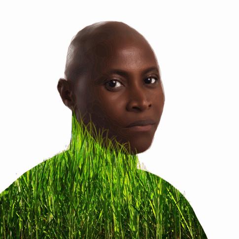 Absalon in Green