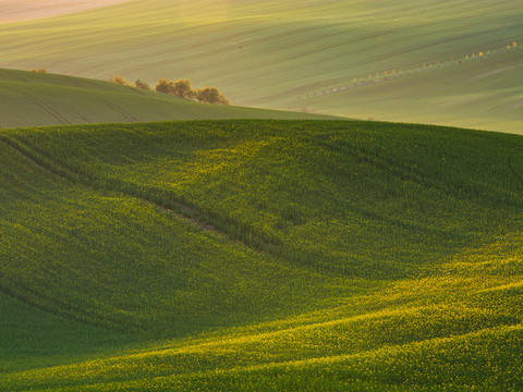 Detaily Jižní Moravy