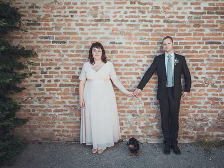 Pes na svatbě? YES!!!