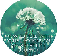 Fertility Journal, Fertility Potentials.