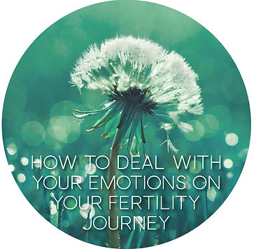 FERTILITY JOURNAL - HOW TO DEAL WITH YOU