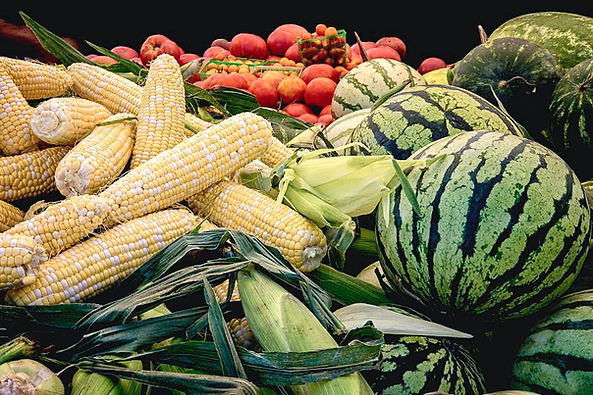 farm-to-market-produce-melons-corn-tomat