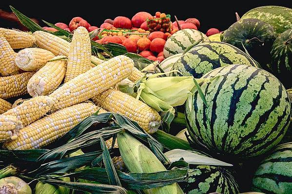 farm-to-market-produce-melons-corn-tomat