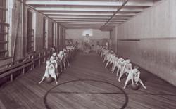 WBC, Gym Class, Luce Ne