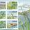 Thumbnail: ALDERNEY - DRAGONFLIES   2010
