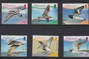 ALDERNEY - BIRDS - WADERS  2009