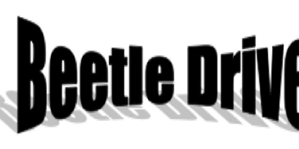 Bighton Beetle Drive