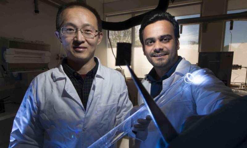 Профессор Ларри Лу (слева) и его коллега
