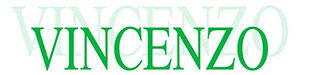 vincenzo logo.jpg