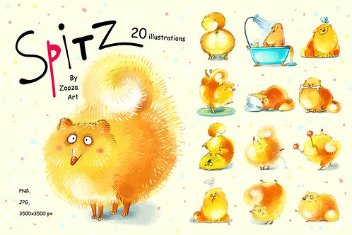 Spitz - 20 illustrations