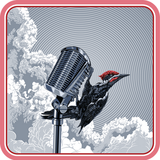 Worcester Woodpecker