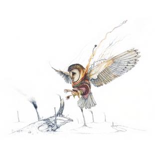Repunzel the Barn Owl