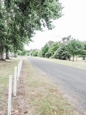Driveway to camp grounds