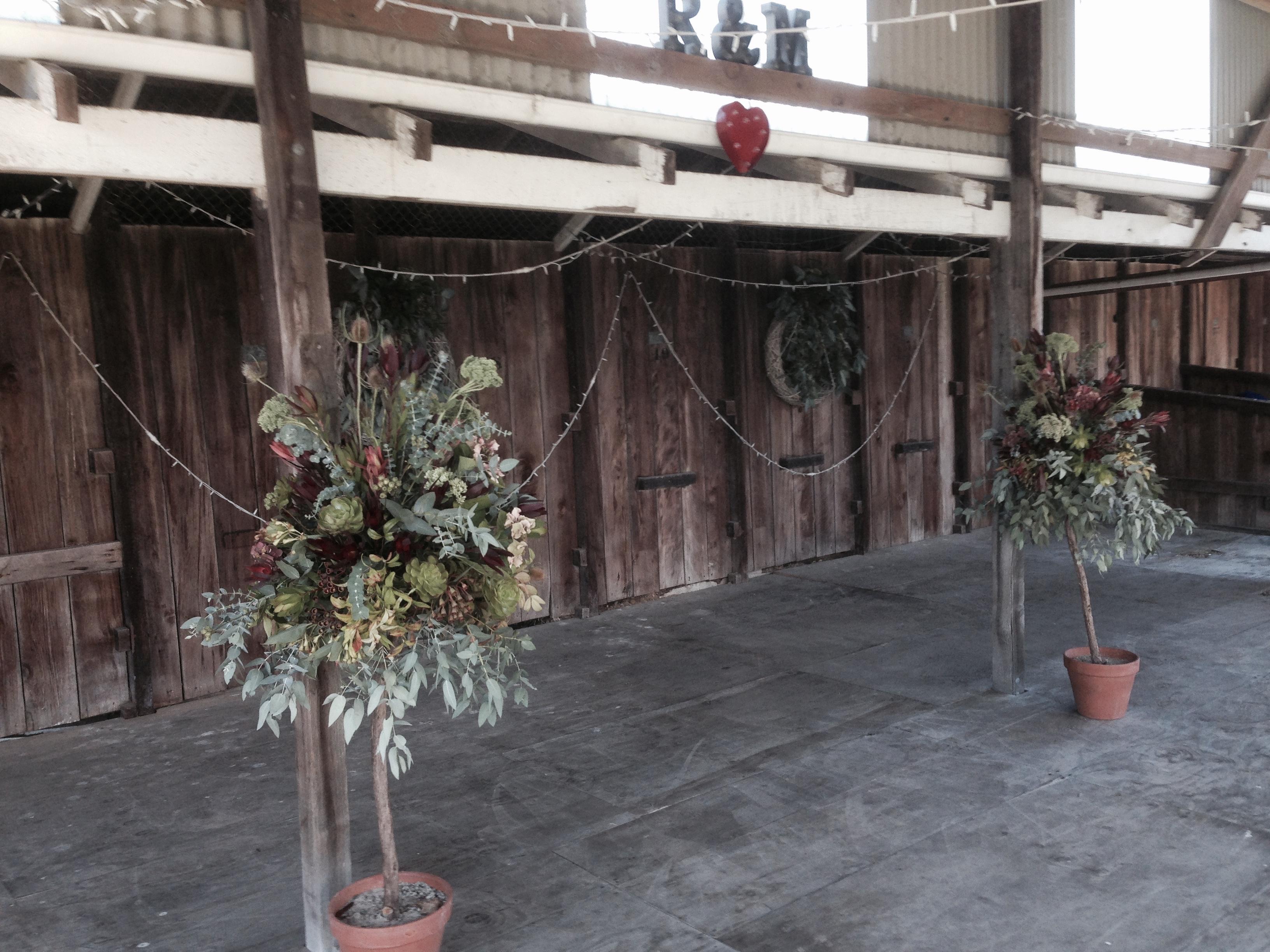 Dance floor at Showgrounds venue