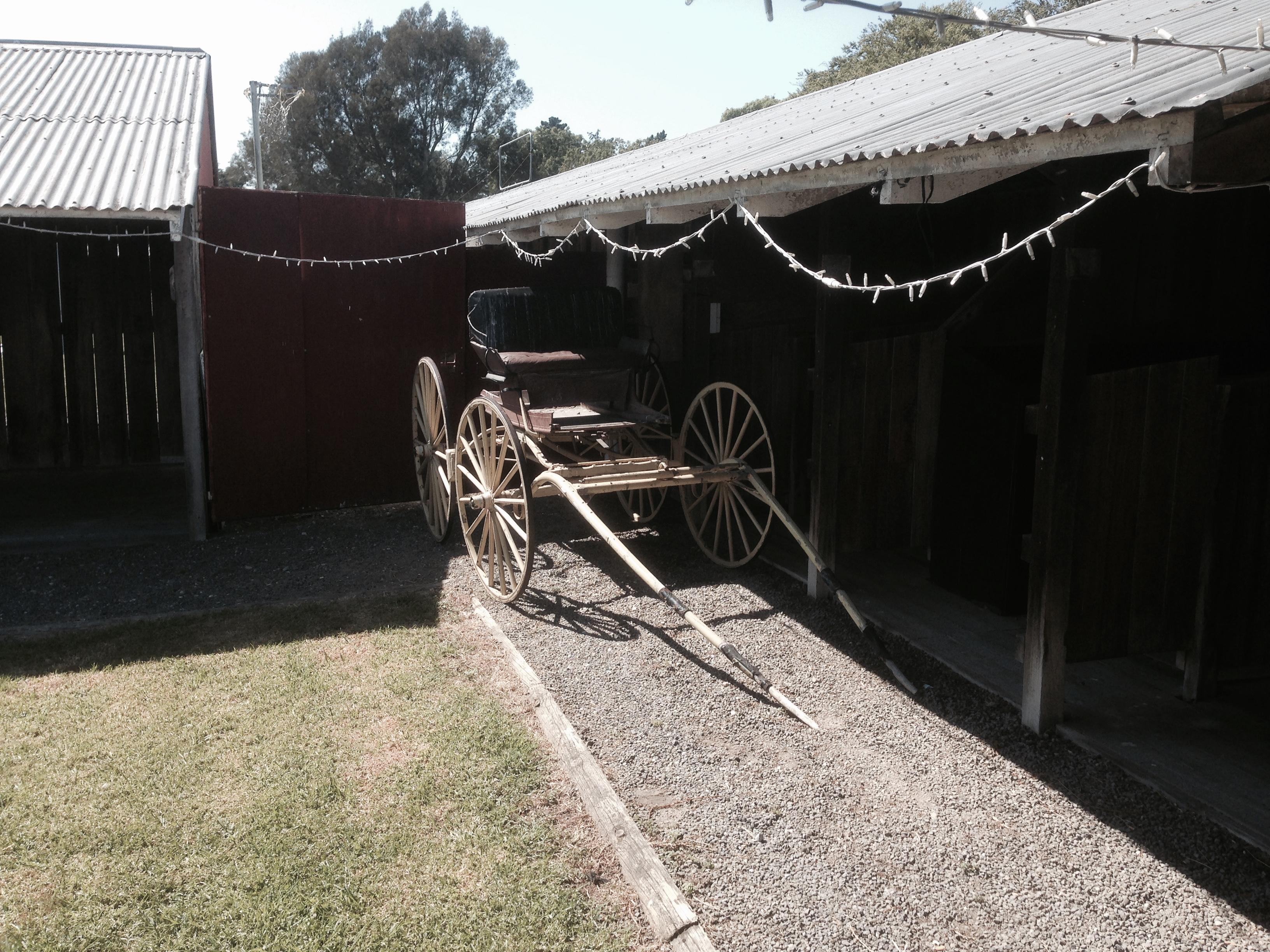 Cart at Showgrounds Venue