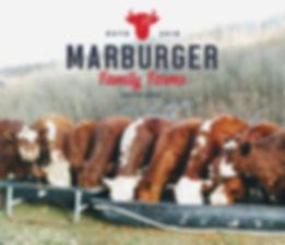 Marburger copy.jpg