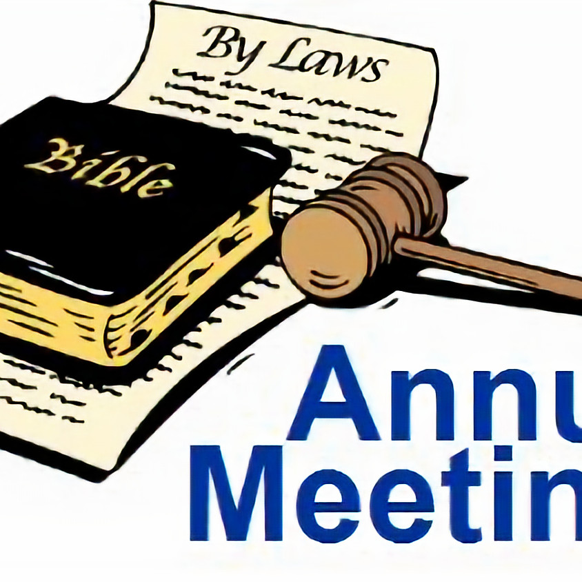 ANNUAL MEETING and ELECTIONS