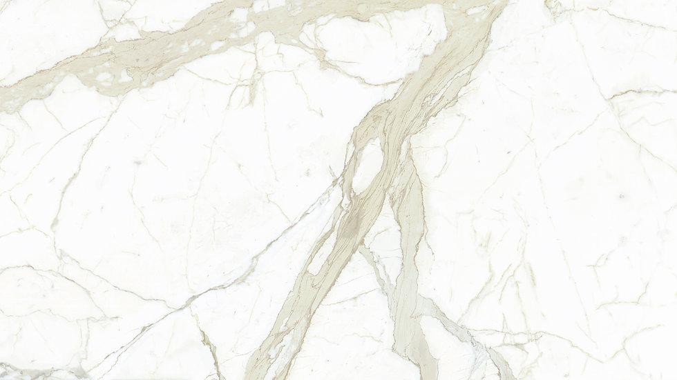 White Calacatta