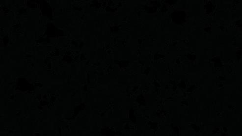 G031 Black Granite