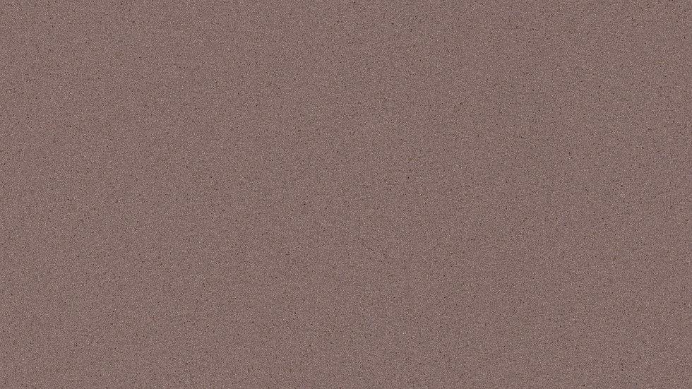 407P Warm Grey Polished
