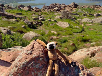2. Linkee's Mountainside Adventure